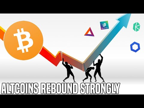 Crypto Markets Rebound | The Altcoin Cycle Continues