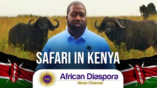 Our Very First Safari In Nairobi National Park