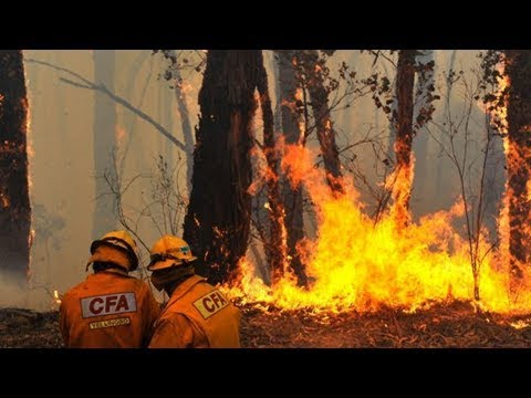Opposition calls for powerful judicial review into cfa bullying and ual assault claims