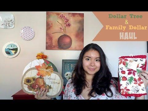 Dollar Tree & Family Dollar Haul (11/3/17)