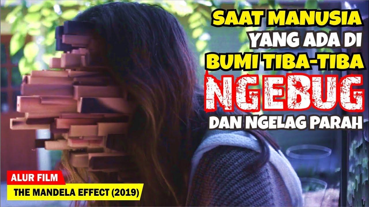SELURUH MANUSIA DAN ALAM SEMESTA TIBA-TIBA NGEBUG SEMUA | Alur Cerita Film The Mandela Effect (2019)
