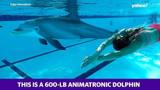 Dolphins and animatronics may bring the global marine park industry back to life