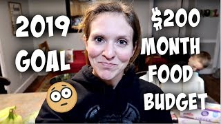 2019 Goal - Feeding a Family of 6 on $200 a month | $40 One Week Grocery Haul