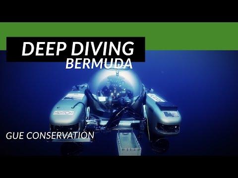 Nekton & Project Baseline: Bermuda Project