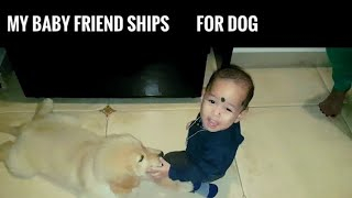 MY BABY AND GOLDEN RETRIEVER DOG FRIEND SHIP..