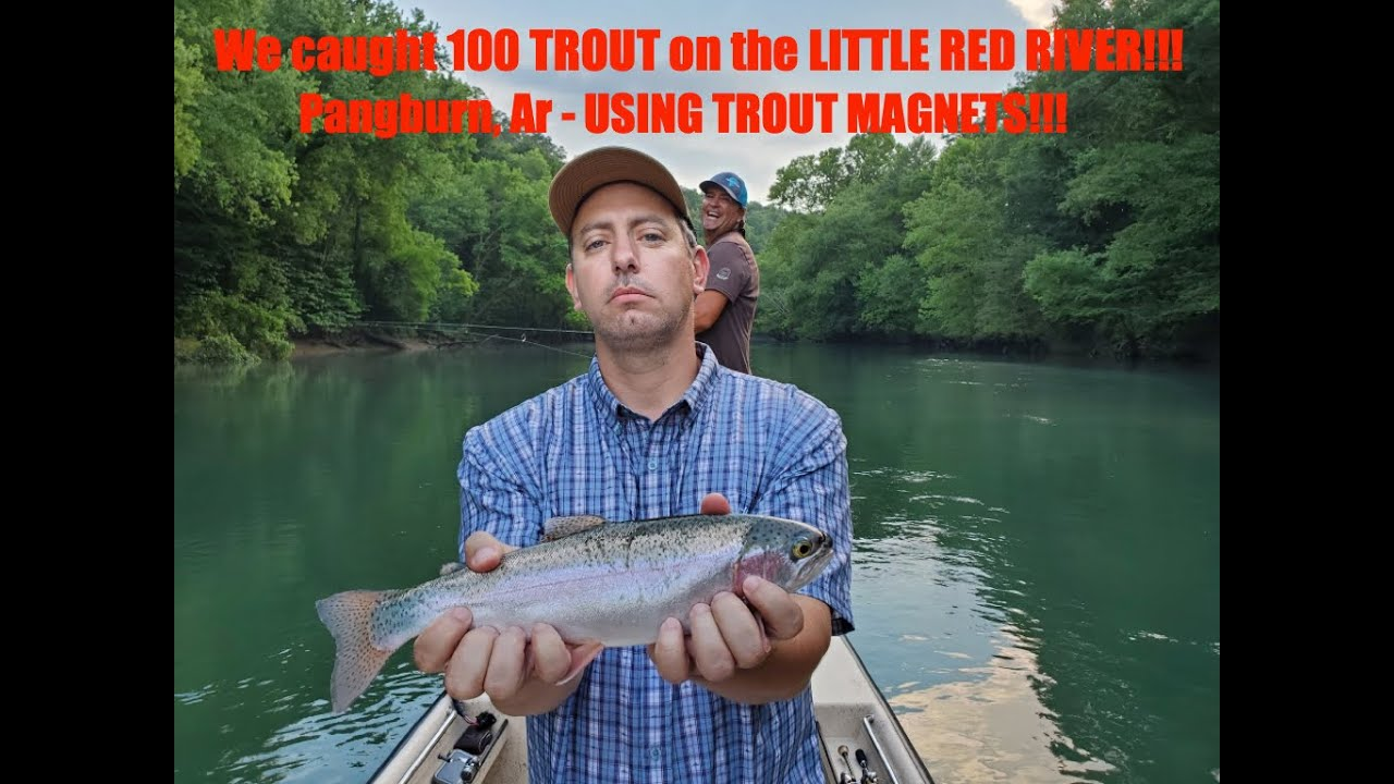BnM FISH EAT LIVE Little Red River Trout Fishing
