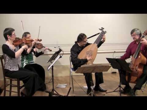 Concerto pour luth de Kohaut - Mauricio Buraglia - Sté Française de luth