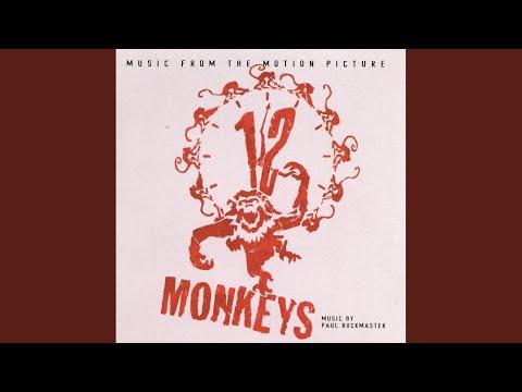 Introduccion From Suite Punta Del Este 12 Monkeys Theme