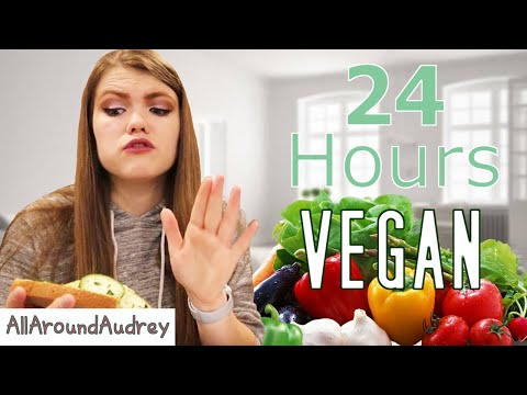24 Hours Eating VEGAN Food I AllAroundAudrey