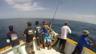 Yellowtail on the surface iron. Mission Belle bow cam 4/1/15