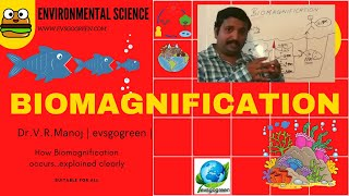 Biomagnification video lecture