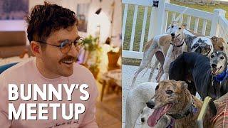 julien talks about bunny's first greyhound meetup