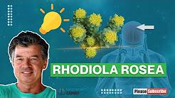 hqdefault - Rhodiola Rosea Dose Depression