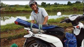 Đi câu cá trê đồng - cá nhiều như trong ao