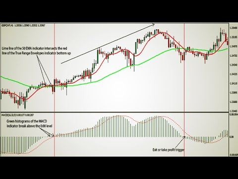 How to trade macd in forex