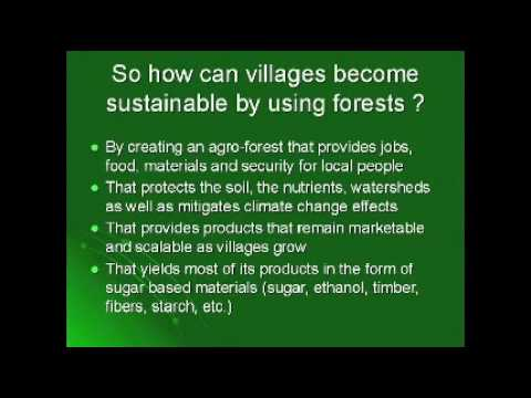Sustainability Starts at the Village Level:  Willie Smits at TEDxMidwest