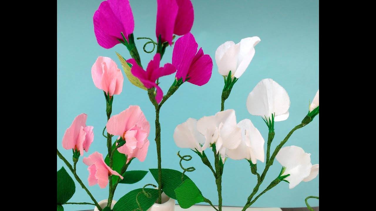 How To Make Paper Flowers Sweet Pea Flower 86 Improved Version
