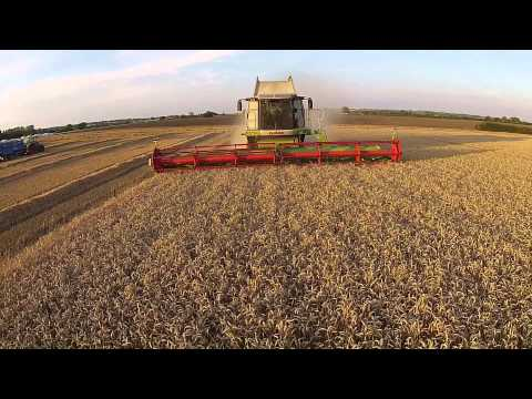 Wheat Harvest 2015 Lexion 580+tt at Toft Farm