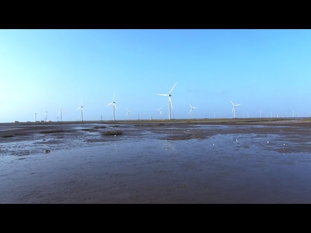 Pakistan Gets Serious About Renewable Energy