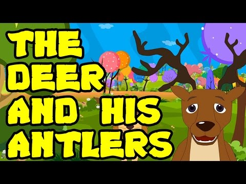 Animated & Cartoon Stories For Kids   The Deer And His Antlers