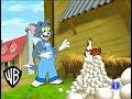 El show de Tom y jerry | Huevos y Más Huevos | en español ( Parte 1/2 )