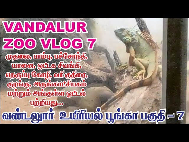 vandalur zoo vlog 7 | Arignar anna zoological park chennai
