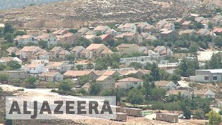 Palestinian farmers return to their land