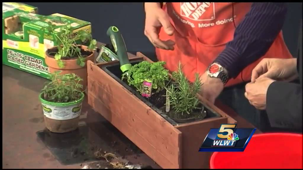 Learn How To Make An Indoor Herb Garden   YouTube