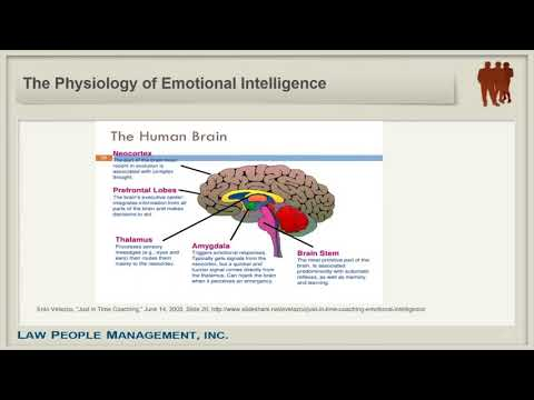 """Advancing Your Career with """"Emotional Intelligence"""""""