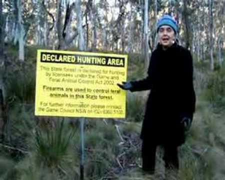 Hunting in NSW state forests