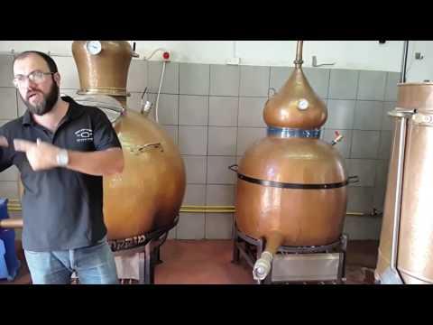 Episodio #8: Tour Destilería Golan Heights (Israel) Nos Explica ¿Como Se Hace El Whisky?