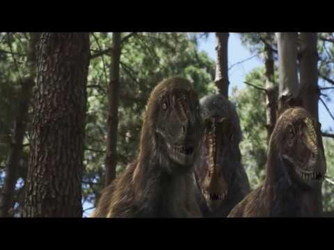 Microraptor resounded