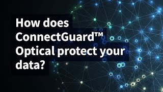 How Does ConnectGuard™ Optical Protect Your Data?