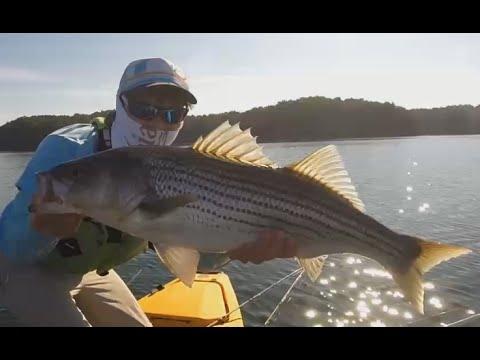 Kayak fishing lake lanier 4 youtube for Lake lanier fishing