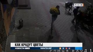 Видео кражи цветов