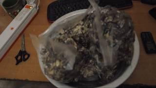 Сушеные грибы пакуем на хранение вакууматором