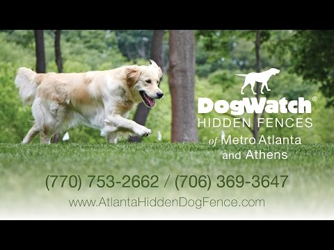 DogWatch® of Metro Atlanta and Athens - Enjoy the Freedom of our Hidden Fences!