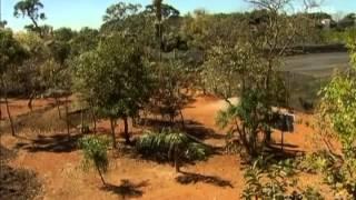 Projeto Águas do Cerrado, do IPOEMA - Instituto de Permacultura de Brasília - TV Brasil