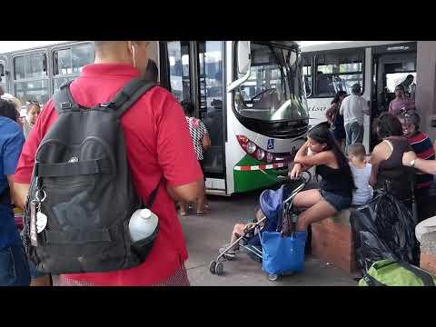 Costa Rica, Abenteuer-Reise Zur Öko-Gemeinschaft Pachamama