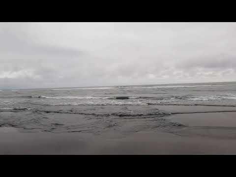 Тихий океан. Халактырский пляж. Камчатка июль 2019