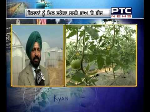 Indo - Israel Centre of Excellence For Vegetable at Kartarpur Sahib | Sabziyan Sadabahar