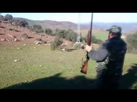 chasse de sanglier a moulay bouazza.maroc.janvier 2015