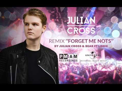 Julian Cross & Bear Feat. Libbie - Forget Me Nots ( Sham G Remix )