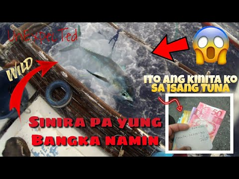 Tuna Fishing   Catch U0026 SeLL   MaLupeT Na PaghuLi Ng Tuna
