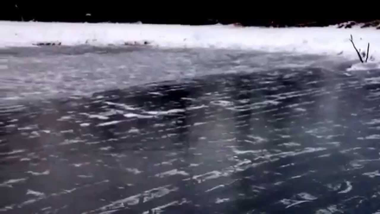 my first trip around our backyard pond skating rink youtube