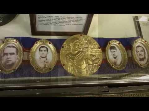 Professional Wrestling Hall of Fame II