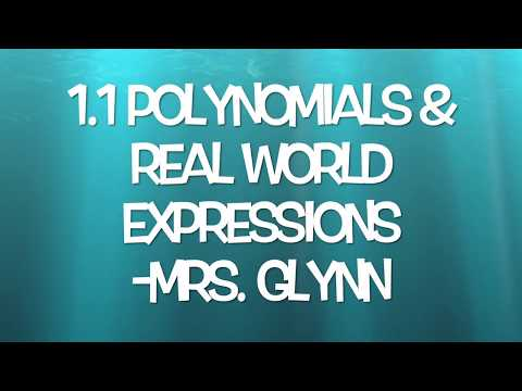 1.1 Polynomial & Real World Expressions