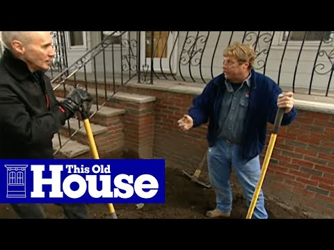How to Plant a Low-Maintenance Urban Garden - This Old House