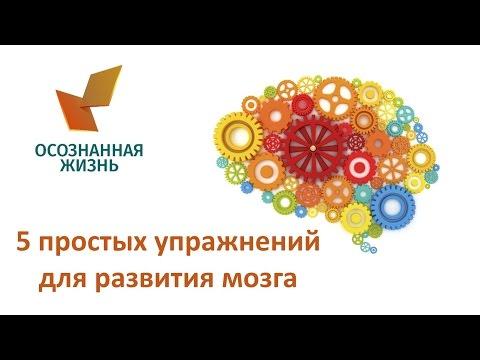 5 простых упражнений для развития мозга