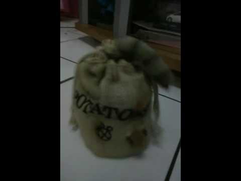 Mainan Kucing Dalam Karung Mp3